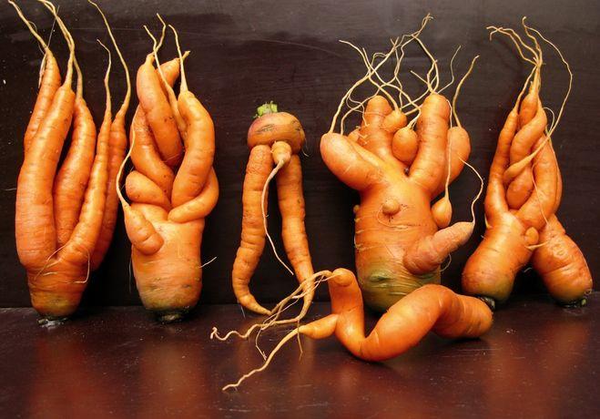 Корявая морковь