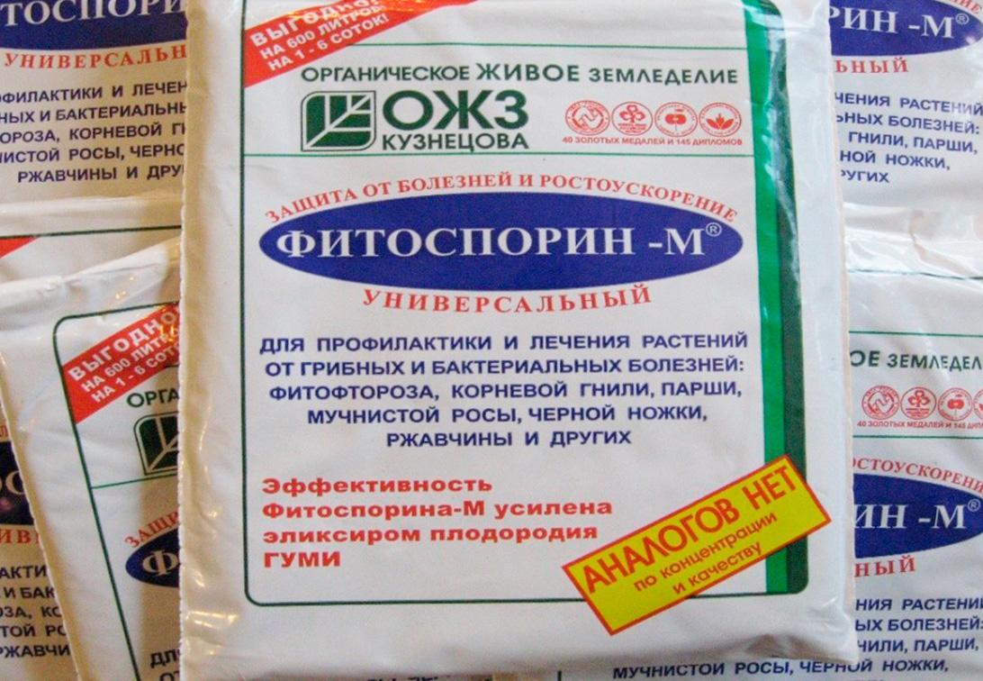 Эффективные средства при борьбе с фитофторозом на томатах
