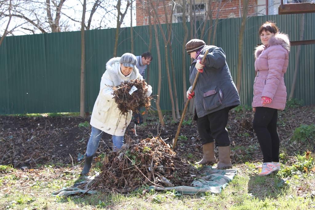 4 совета от опытного садовода-огородника