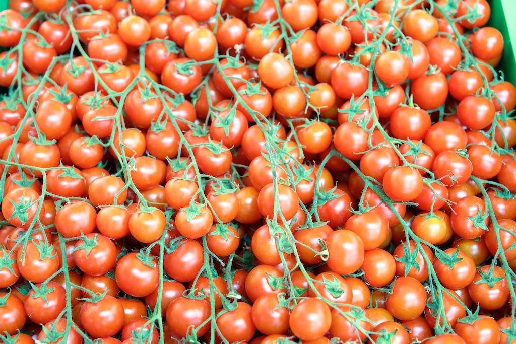 Народные средства для подкормки томатов