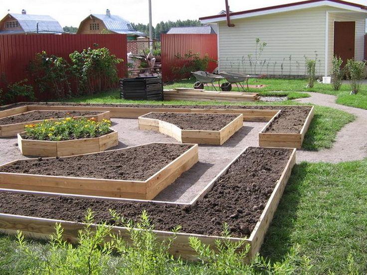 Полезные советы для начинающих огородников 🌱