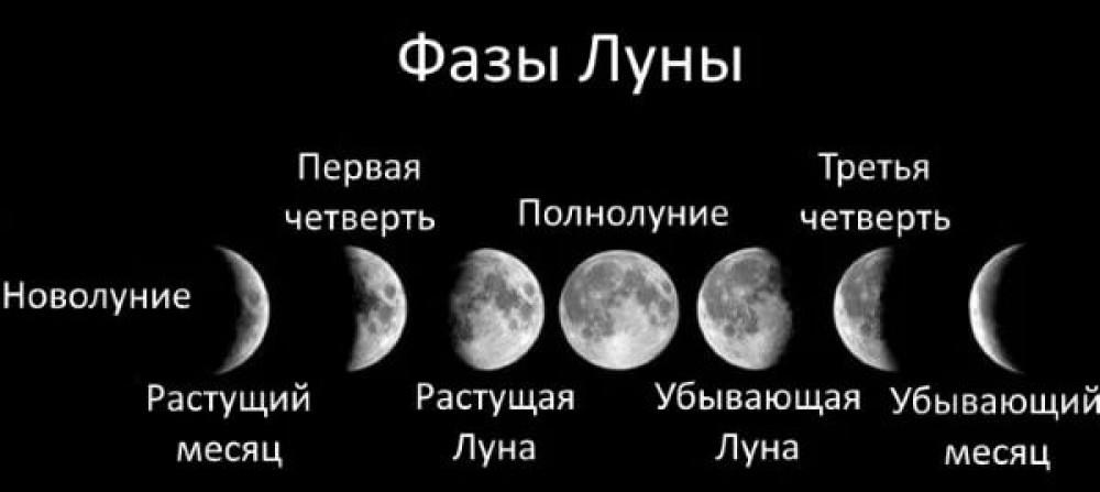 Лунный календарь фиалок на 2021 год — благоприятные дни для посадок, пересадок, ухода: таблица по месяцам