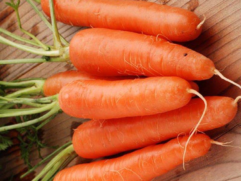 Когда сажать морковь весной в открытый грунт по лунному календарю в апреле 2021 года: выбор благоприятных дней