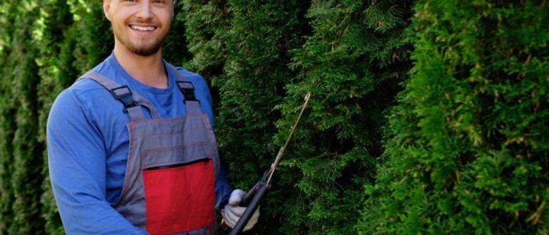 одежда для садовника